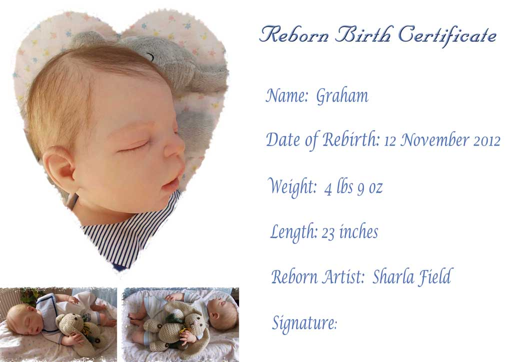 Reborn Birth Certificate for Graham.  Reborn by Sharla Field of Silvery Moon Cherubs from the Henry sculpt by Sheila Michael.