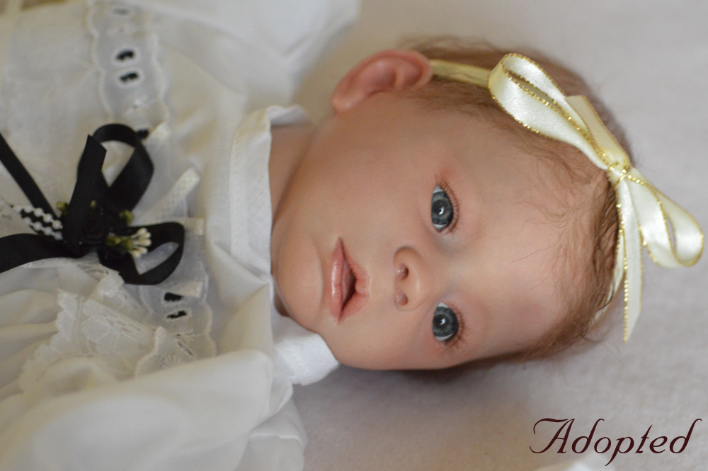 Reborn baby girl doll Nikki.  Reborn by Sharla Field of Silvery Moon Cherubs