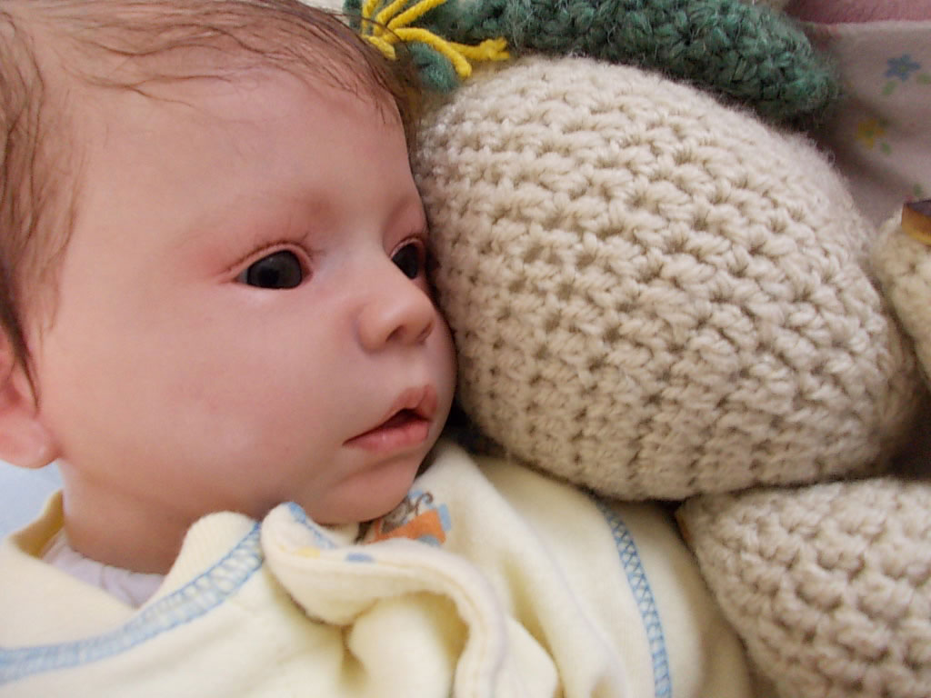 Reborn baby girl Nikki reborn by Sharla Field of Silvery Moon Cherubs